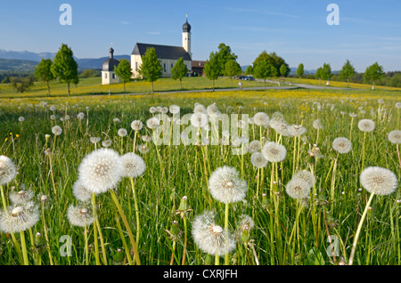 Young woman on a racing bicycle, Wilparting pilgrimage church, Irschenberg, Upper Bavaria, Bavaria, Germany, Europe - Stock Photo