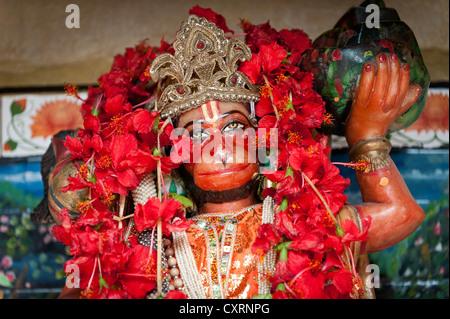 Hanuman, Hindu monkey god, red hibiscus flowers, Calcutta or Kolkata, West Bengal, East India, India, Asia - Stock Photo