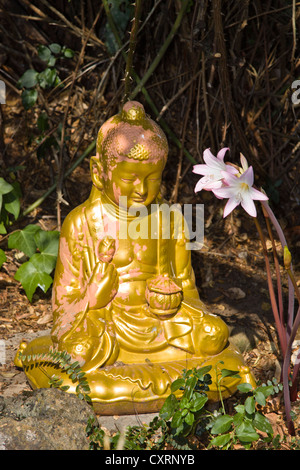 Buddha statue made of stone in garden with lillies, Algarve, Portugal, Europe - Stock Photo