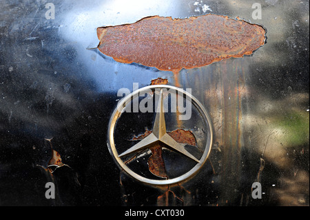 Mercedes star, old rusty Mercedes classic car, Yangon, Burma also known as Myanmar, Southeast Asia, Asia - Stock Photo