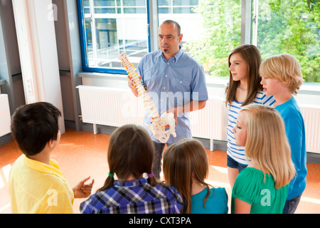 Teacher holding a model of the spine in front of a class of schoolchildren - Stock Photo
