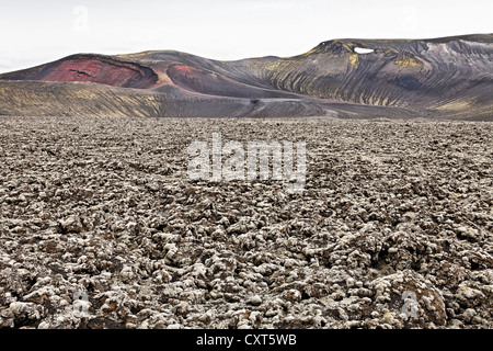 Nyjahraun lava field overgrown with moss in front of the rhyolite mountains in Fjallabak Nature Reserve, Highlands, - Stock Photo