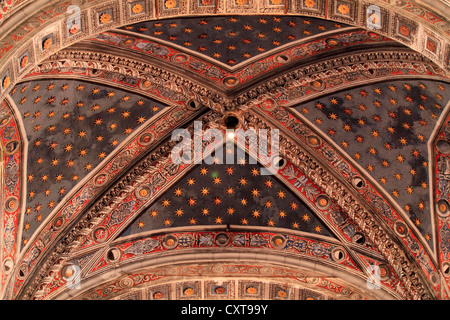 Cross vaults with frescoes, Siena Cathedral, Cathedral of Santa Maria Assunta, Siena, Tuscany, Italy, Europe - Stock Photo