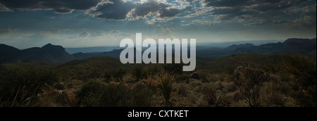 Night sky at Big Bend National Park, Texas. - Stock Photo