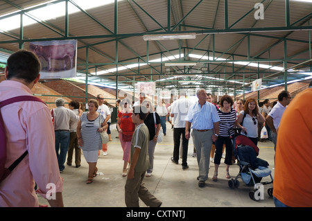 the participantes visit fair International Livestock agro-industrial exhibition, at Zafra, Badajoz, Spain - Stock Photo