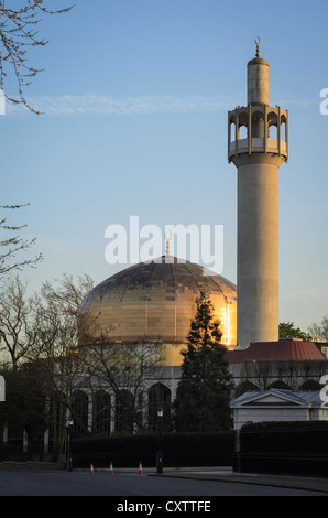 London Central mosque - Stock Photo