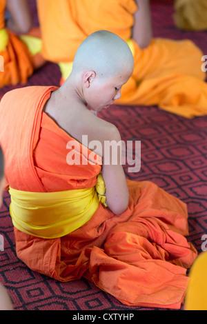 A young monk sits in the meditation hall of Wat Xieng Thong. Luang Prabang, Laos - Stock Photo