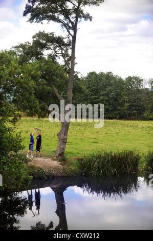 Reflections of scots pine tree on loch garten stock photo for Swingvillage