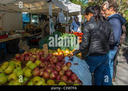 New York City, NY, USA, Couple Food Shopping at Outdoor American Farmer's Market, Abington Square, in Greenwich - Stock Photo