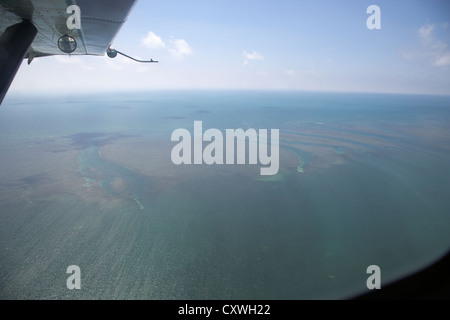 flying over barrier reef off key west in the gulf of mexico florida keys usa the reef shows channels some caused - Stock Photo