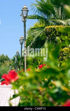 Street lamps by the palm trees. - Stock Photo