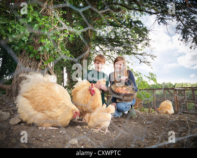 Children gathering eggs from chickens - Stock Photo