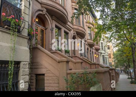 New York City, NY, USA, Street Scenes, Historic Townhouses, Row Houses, Brownstone Buildings in Harlem Area, Hamilton - Stock Photo