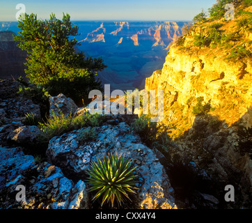 Point Sublime, on the North Rim of the Grand Canyon, is one of the most breathtaking vistas anywhere in the Grand - Stock Photo