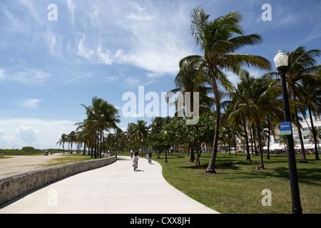 lummus park miami south beach florida usa - Stock Photo