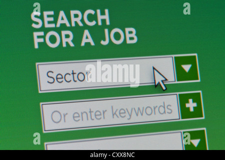 Close up of a fictional website inviting users to search for a job after providing details - Stock Photo