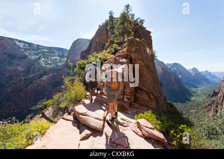 People hiking a strenuous Angel's Landing trail at Zion National Park - beautiful scenic views - Stock Photo