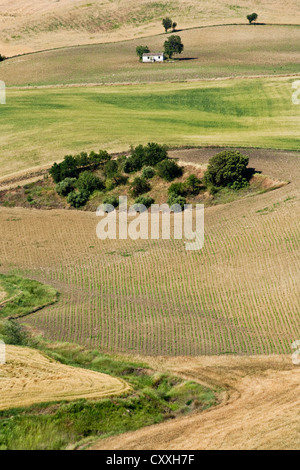 View of fields in Andalusia, Spain, Europe - Stock Photo