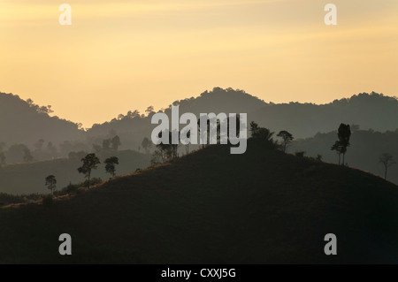 Backlit landscape, silhouette, evening light, Northern Thailand, Thailand, Asia - Stock Photo