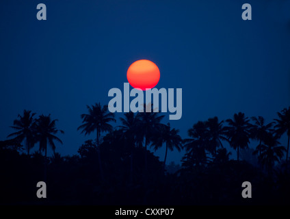 Stunning Sunset Above Palm Trees With A Clear Sky, On Alleppey Beach, India - Stock Photo