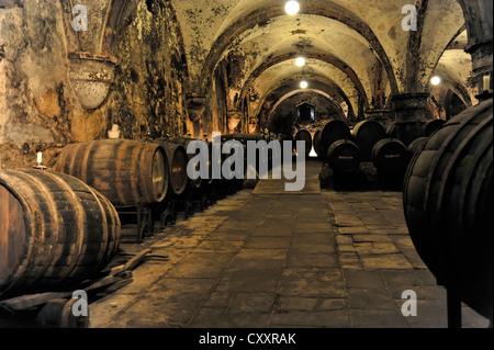 Wine cellar, Eberbach monastery, founded in 1136, Eltville am Rhein, Rheingau region, Hesse - Stock Photo