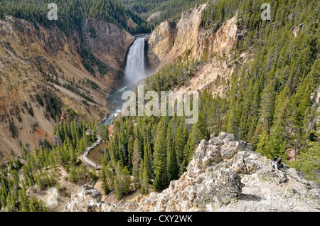 Lower Falls with the Red Rock Trail, Grand Canyon of the Yellowstone River, view from North Rim, Yellowstone National - Stock Photo