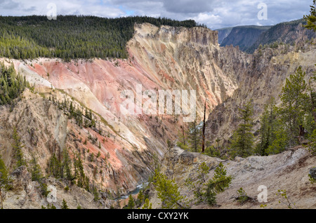 View from Artist Point, South Rim, Grand Canyon of the Yellowstone River, Yellowstone National Park, Wyoming, USA - Stock Photo