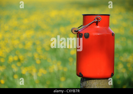 Old red milk can or churn in front of a dandelion meadow - Stock Photo