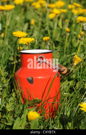Old red milk can or churn in a dandelion meadow - Stock Photo