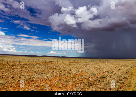 Rain front approaching at Helmeringshausen on road D707, south of Namibia, Africa - Stock Photo
