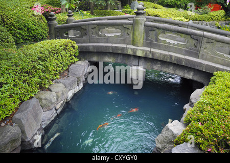 Japanese Garden Stone Bridge stone-bridge in koi-pond stock photo, royalty free image: 71935818
