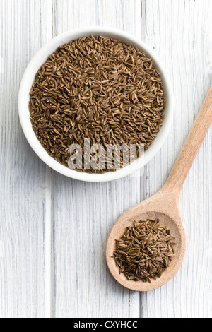 the cumin seeds in wooden spoon - Stock Photo