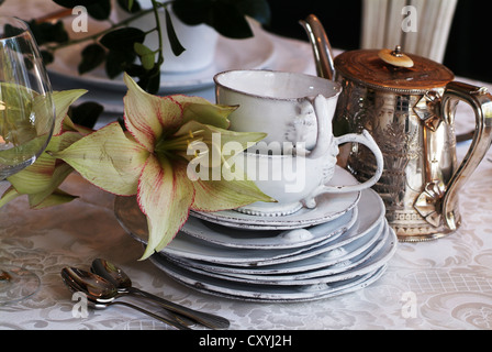 Antique fine bone china service, stylish setting - Stock Photo
