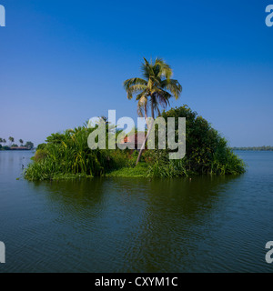 Little House Covered With Flora On A Island In Backwaters Of Kerala, Alleppey, India - Stock Photo
