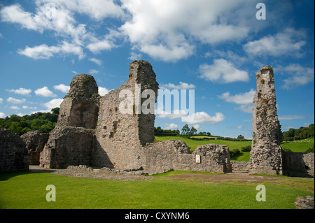 The 13th Century ruins of Montgomery Castle, on Castle Hill, Powys, Mid Wales, United Kingdom.   SCO 8688 - Stock Photo
