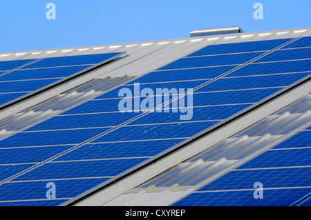 Photovoltaic system, solar cells, solar panels on the roof of a company, North Rhine-Westphalia, PublicGround - Stock Photo