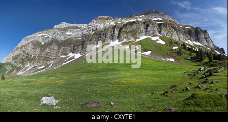 View towards the Alpstein massif with Saentis Mountain from Schwegalp, Switzerland, Europe - Stock Photo