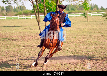 Hungary, Kalocsa, Csikos Hungarian horse rider. - Stock Photo