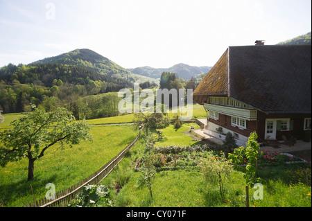 Old Black Forest farmhouse, Praeg near Todtnau, Black Forest, Baden-Wuerttemberg