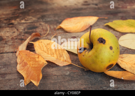 Autumn leaves fallen on the old wooden table and a rotten apple - Stock Photo