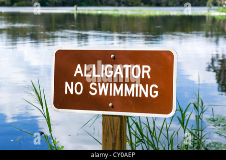 No Swimming because of Alligators sign, Blue Spring Run, St Johns River, Blue Spring State Park, Florida, USA - Stock Photo