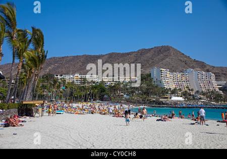 Beach and hotel complex of Anfi del Mar, Playa de la Verga, Aquamarina hotel complex at the rear, near Arguineguin, - Stock Photo