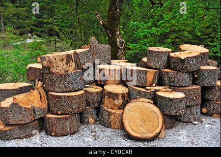Slices of a spruce tree trunk (Picea) by the wayside, Ramsau, Berchtesgaden National Park, Berchtesgadener Land - Stock Photo