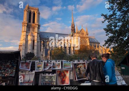 Notre Dame de Paris; La cathédrale Notre-Dame de Paris - Stock Photo