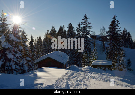 Mountain huts in a snow-covered winter landscape in the evening sun, Brentenjoch, Kaisergebirge or Kaiser mountain - Stock Photo