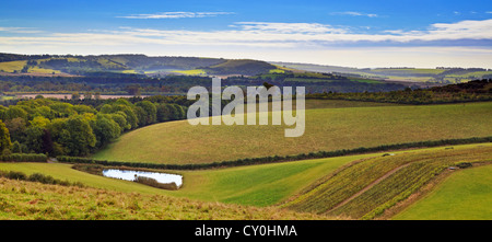 The South Downs national park in Hampshire England, taken from the Monarchs Way looking across the Meon Valley - Stock Photo