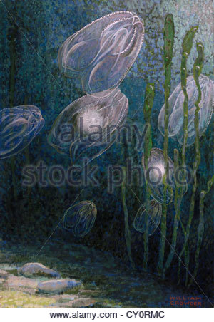 A painting of rainbow-jellies, Mnemiopsis leidyi, floating in water. - Stock Photo