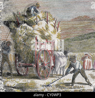 Peasants loading a cart with straw bales. 19th century. Colored engraving. - Stock Photo