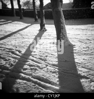 Shadows on snow made by trees in winter - Stock Photo