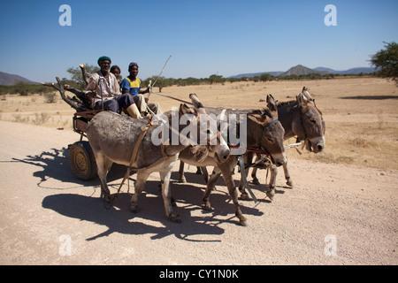 donkey cart in Namibia - Stock Photo